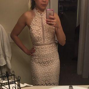 Bardot Gemma Halter Lace Sheath Dress Xs